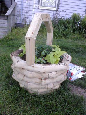 Garden doing good 05180115