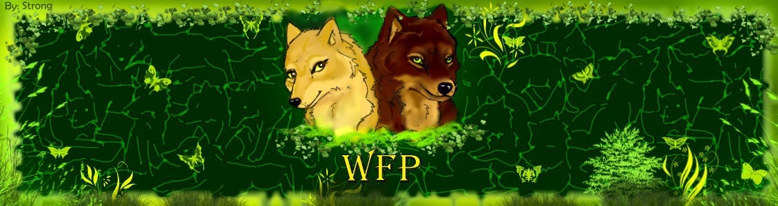 Requests!!!!(Fuego Azul) Wfp-ne12