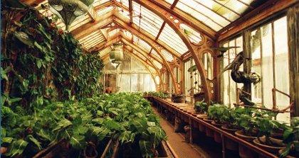 Invernadero # nº 2 # Greenh10