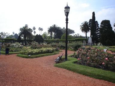 Parque Sirius Black Roseda10