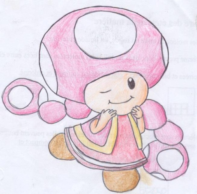 Galerie of Duracell - Page 3 Toadet10