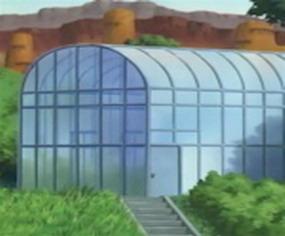 Большой Сад Суны 1c563b10