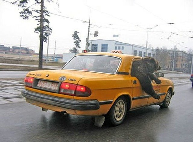 La Russie insolite Taxis_10