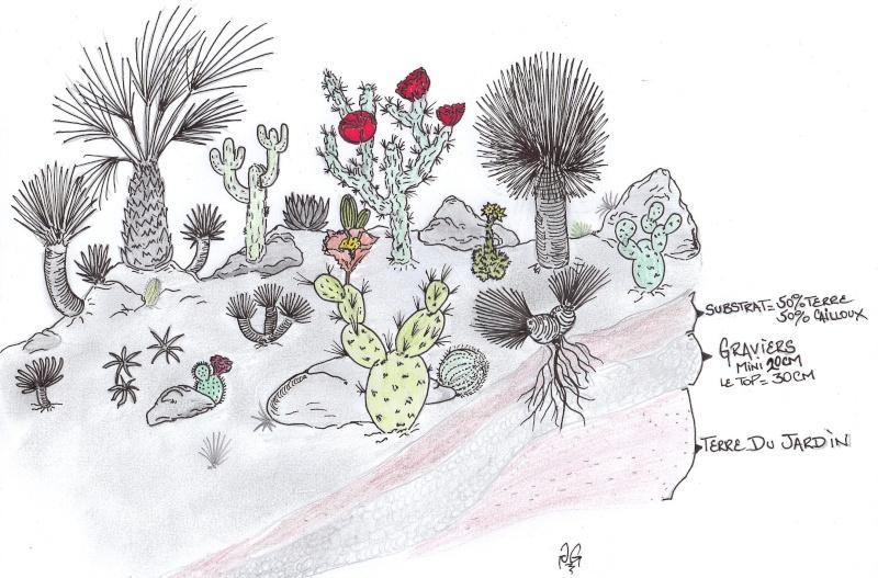 Cactus & co en climat tempéré Scan0010