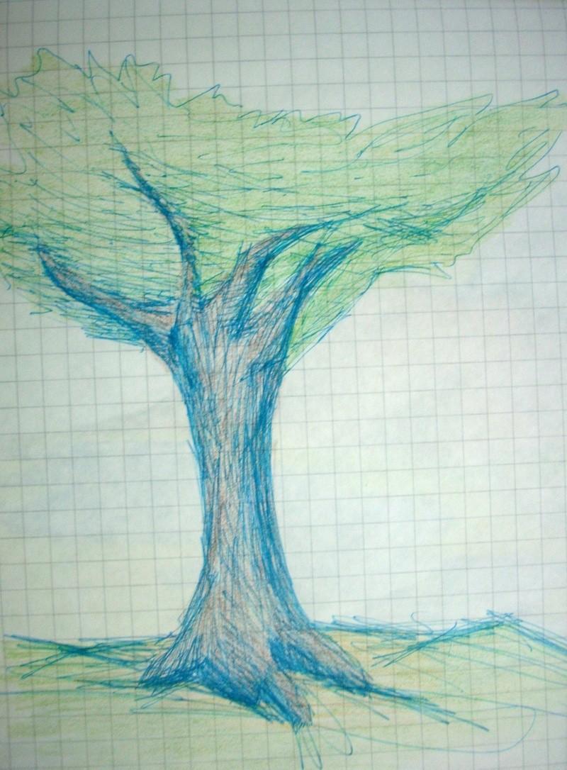 Tree Dscn0712