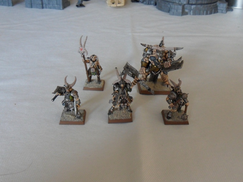 My beastmen! Sam_7713