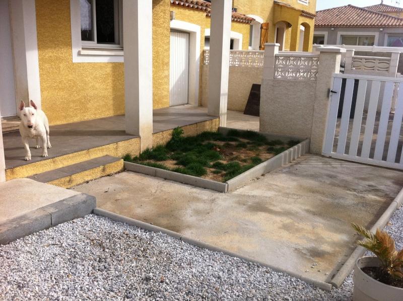 projet de bassin  Img_0610
