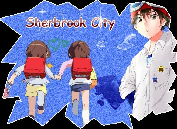 Partenariat - Sherbrook City Logofi10