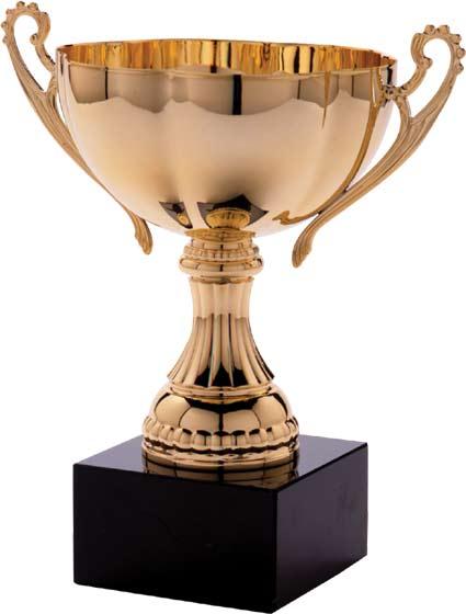Zodiak terminé Award-10