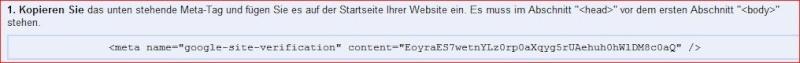 meta tags was muß ich da einfügen  bei name attribut und content attribut? Meta_t11