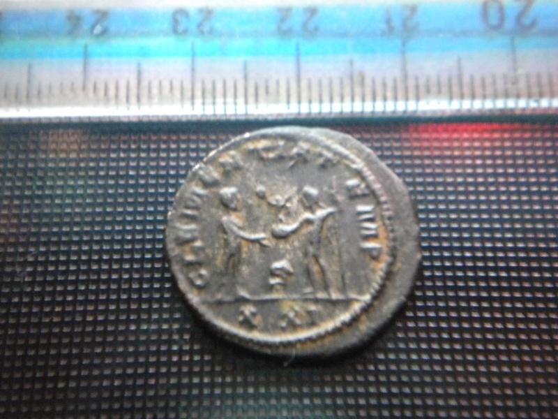 PROBVS clementaia avg-Antioche Dscn4311