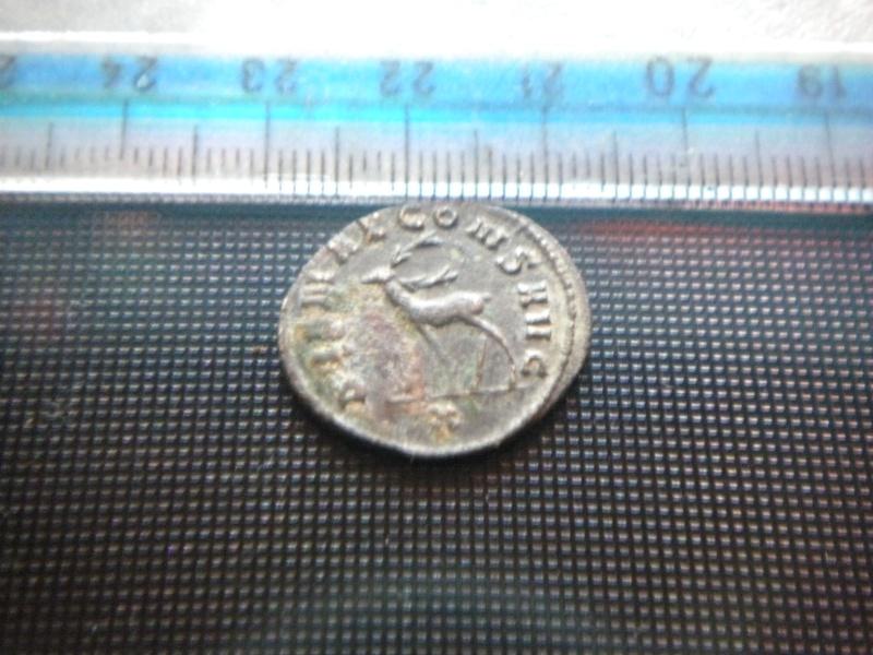 antoninien de Gallien revers DIANAE CONS AVG Dscn4317