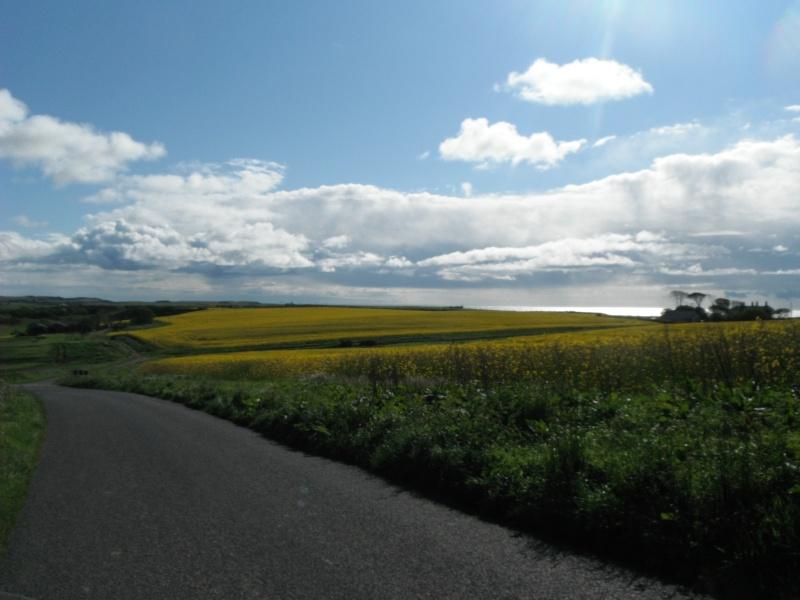 Un petit gout d'inachevé ... Scotland 2011 Dscf5720
