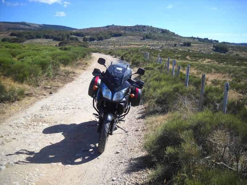 Vos plus belles photos de motos - Page 4 Img02510