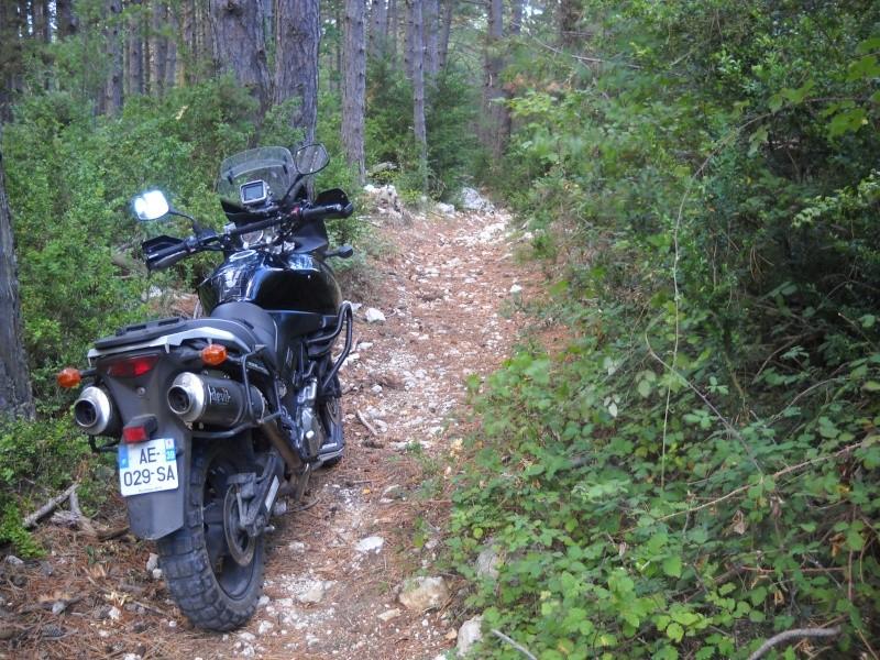 Vos plus belles photos de motos - Page 2 Img03711