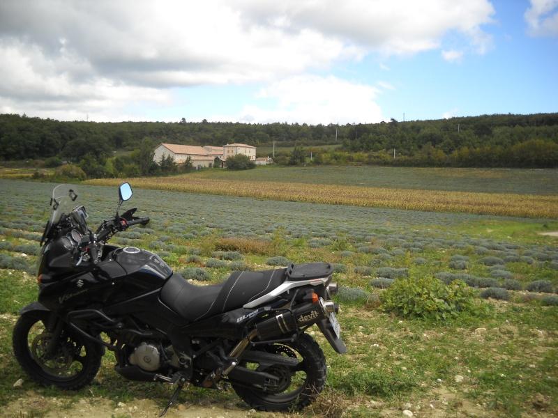 Vos plus belles photos de motos - Page 2 Img03811