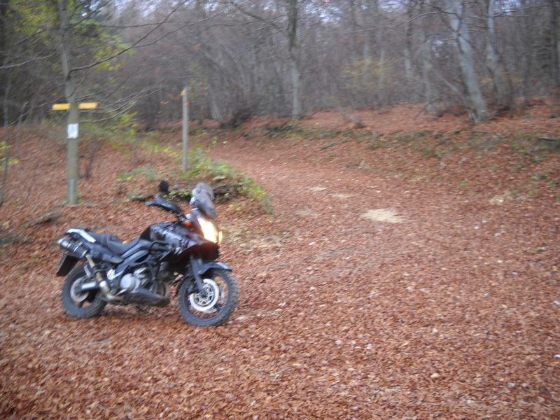 Vos plus belles photos de motos - Page 2 Img04812