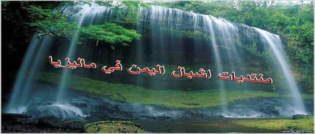 منتديات اشبال اليمن في ماليزيا