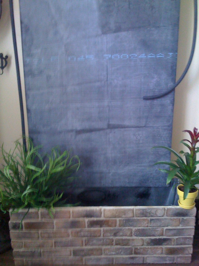 Mon mur végétal Img_0415