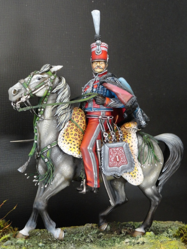 OUDINOT 1° Hussards Dsc00013