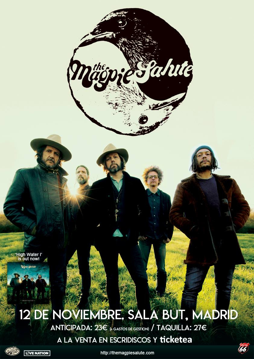 "The Magpie Salute - ""Good morning Captain"" - Página 10 39441510"