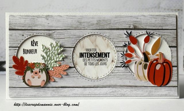 Inspiration carterie Novembre 2020 _mg_9912