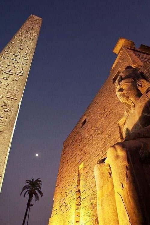 Egypt Tourism's Photos 80489710
