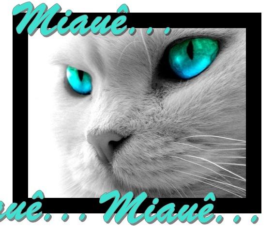 Miauê