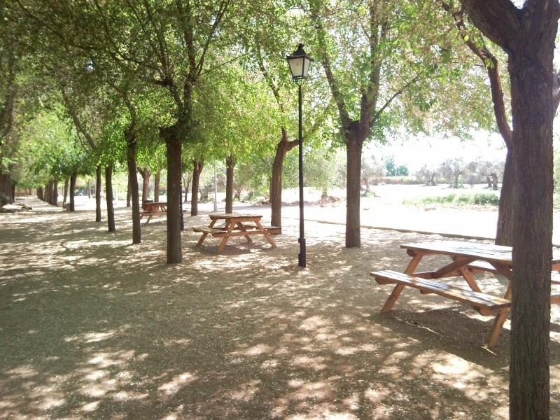Foto parque de los patos 11041512
