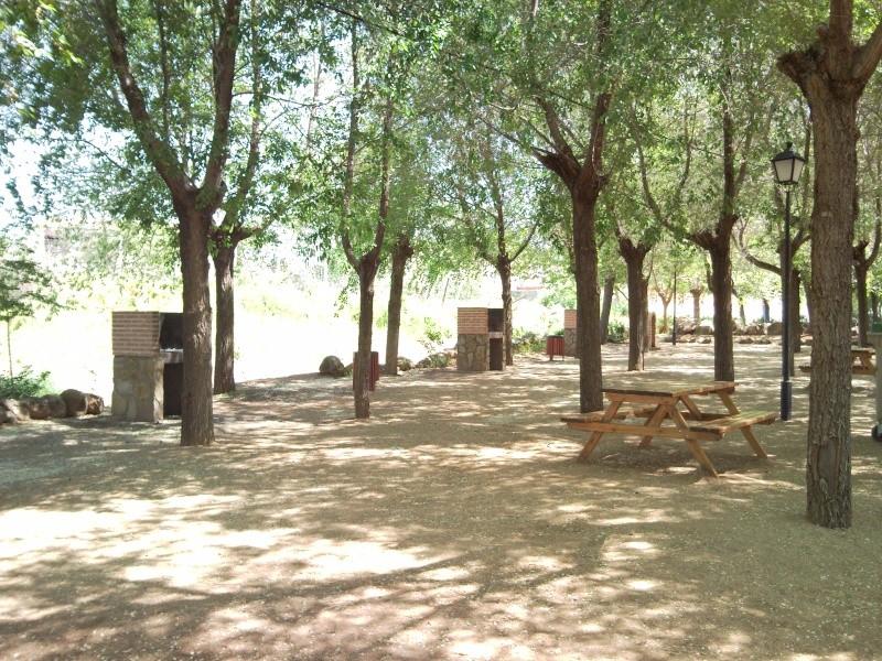 Foto parque de los patos 11041513