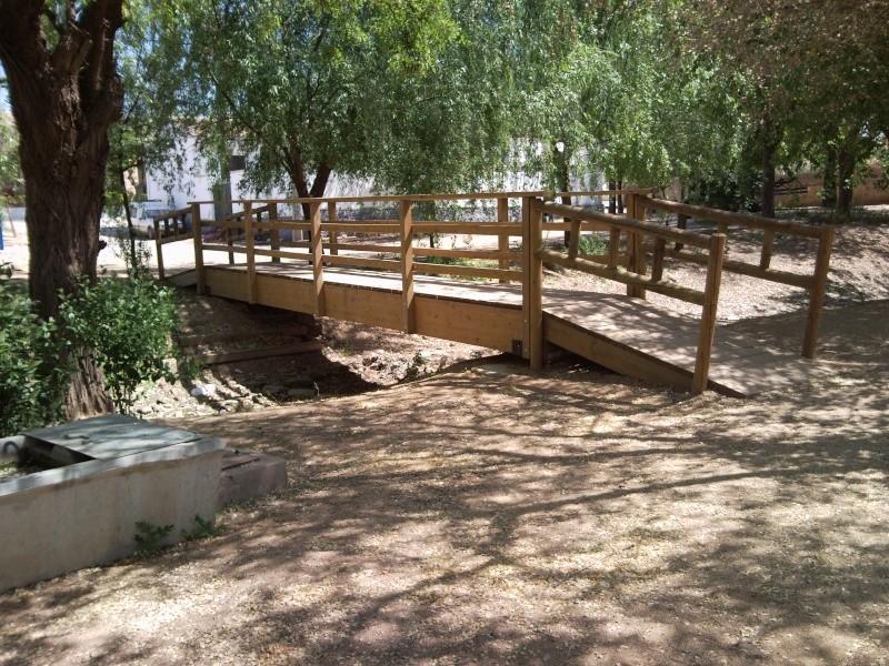 Foto parque de los patos 11041515