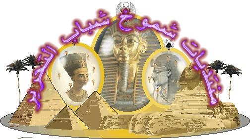 منتديات شموخ شباب التحرير