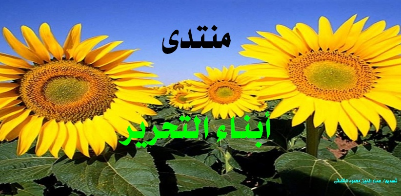 منتدى أبناء التحرير