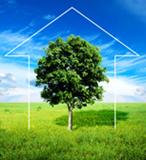 Графика для сайта Ecolog10