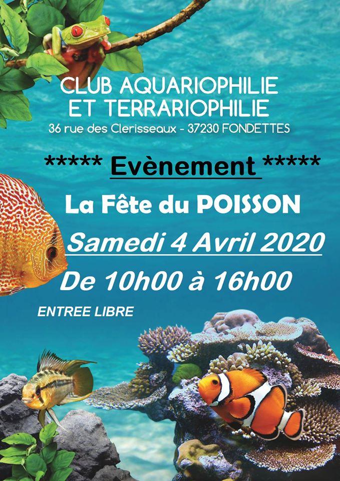 aquariophile  Fondettes  87387310