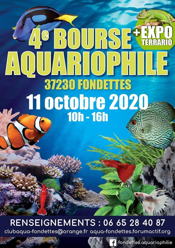 bourse aquariophile  Fondettes 2020 91204810