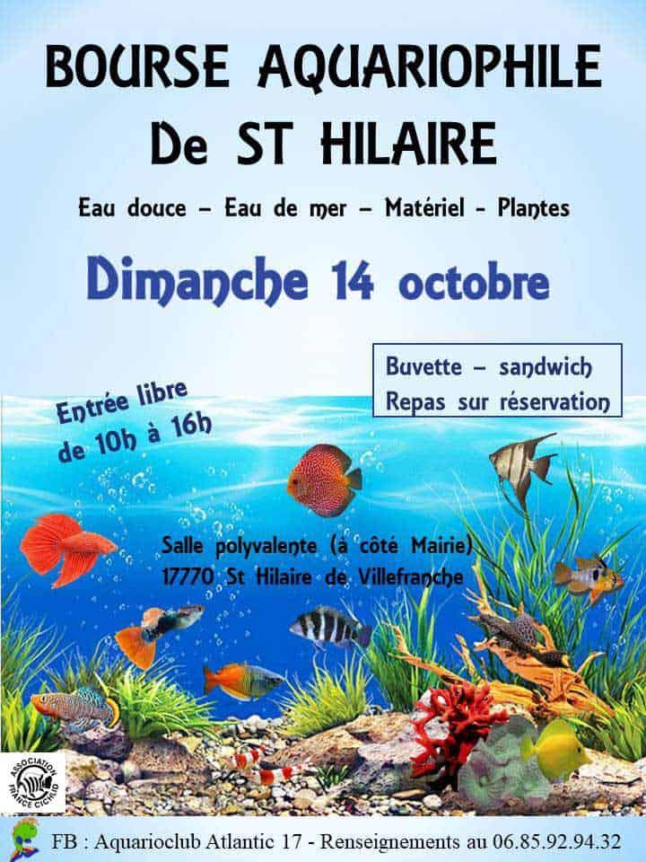 Bourse Saint Hilaire 2018 Bourse11
