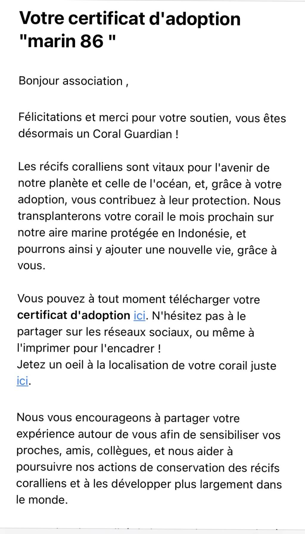 "adoption d un acropora  "" coral Guardian "" Img_0413"