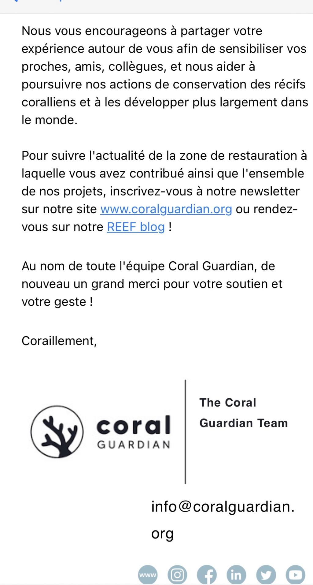 "adoption d un acropora  "" coral Guardian "" Img_0414"