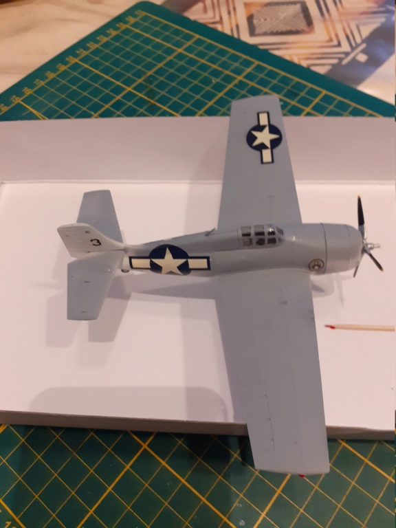 From the box - FM1 WILDCAT Hasegawa 1/72 *** Terminé en pg 1 20201124