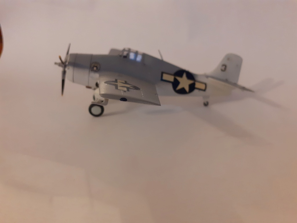 From the box - FM1 WILDCAT Hasegawa 1/72 *** Terminé en pg 1 20201125