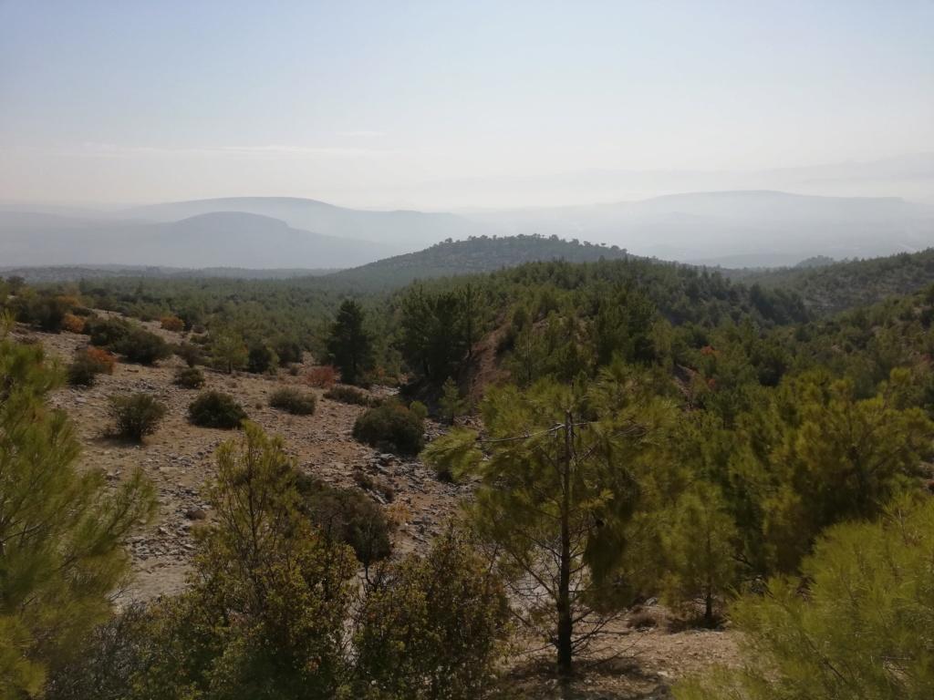 Chasse du Sanglier Attila en Turquie - 2019 - - Page 2 Img_2018