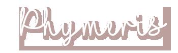 logo-p12.png