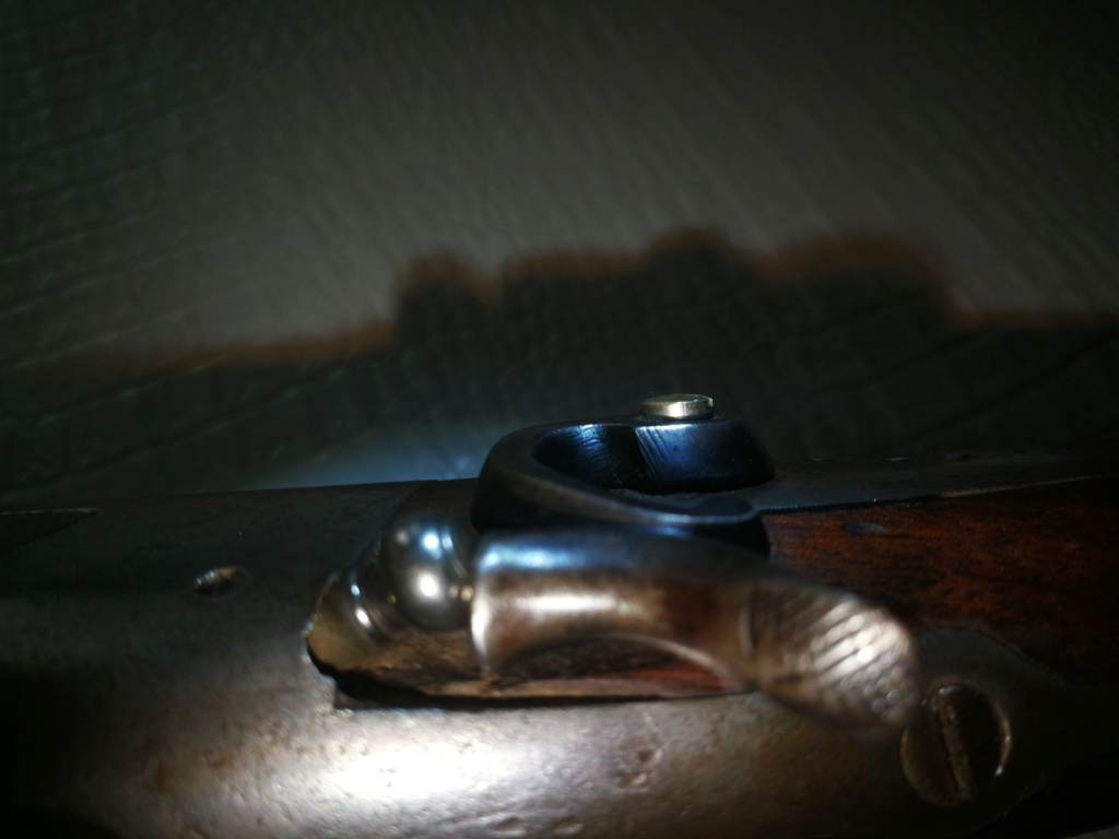 fusil a chien extérieur .  Img_2188