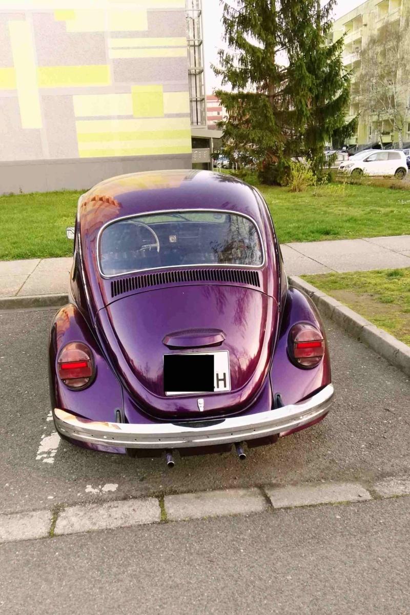 Einen Käfer auf dem Heimweg schnappgeschossen K210