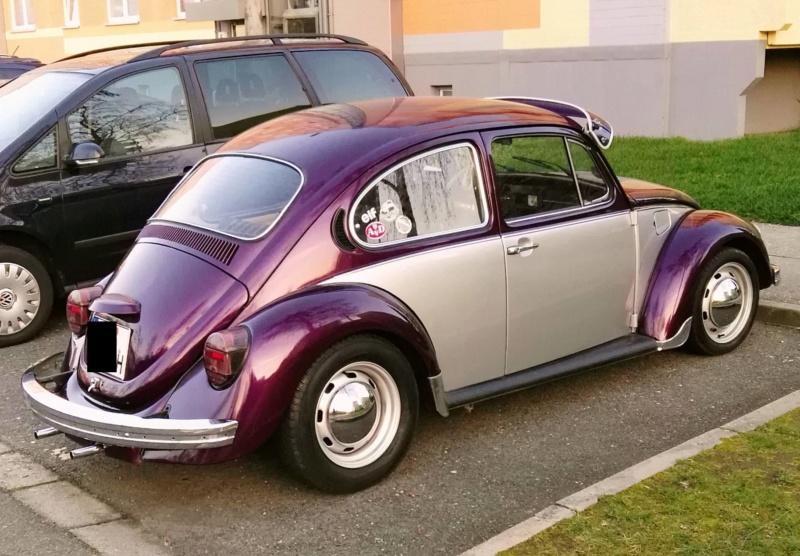 Einen Käfer auf dem Heimweg schnappgeschossen K310