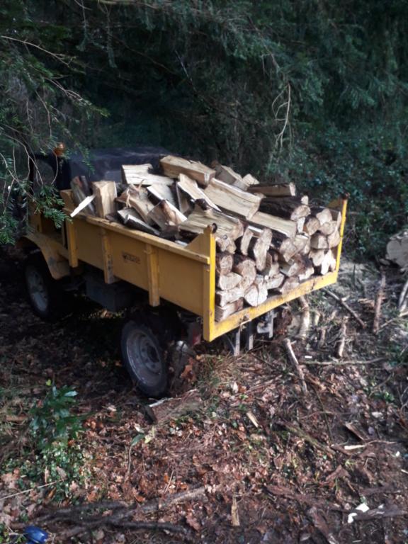 mon ancien 411 au bois et en chantier 20181214