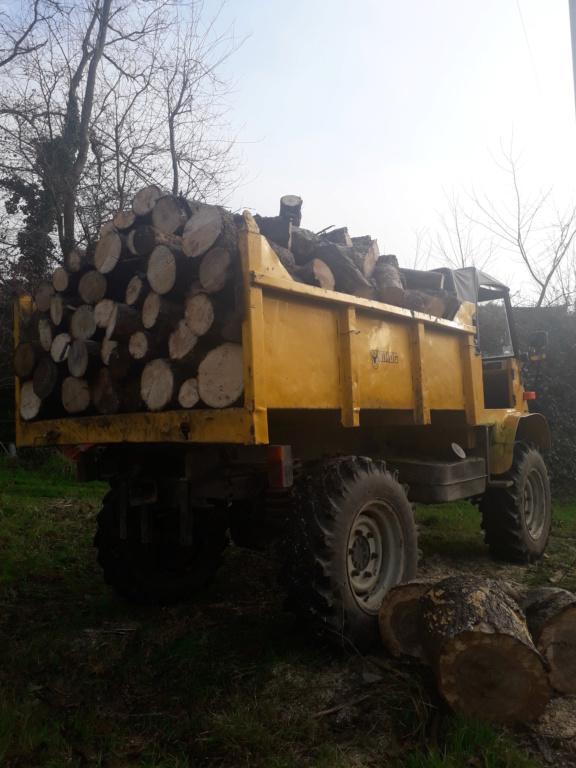 mon ancien 411 au bois et en chantier 20181216