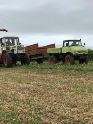 Ensilage mb trac 65 70 et unimog 406 Finistère  Fullsi12