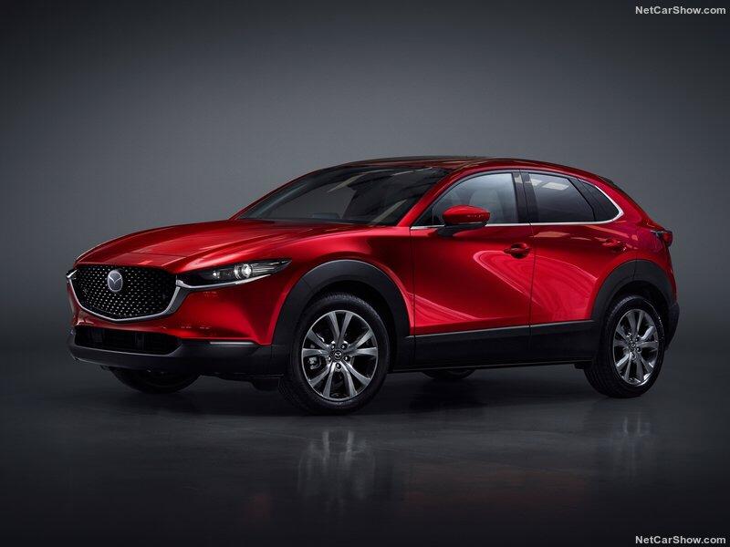 2019 - [Mazda] CX-30 513ce510